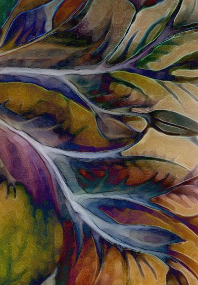 TOLfullcolordetail.jpg